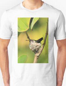 Hummingbird Sitting On Eggs T-Shirt