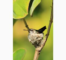 Hummingbird Sitting On Eggs Unisex T-Shirt