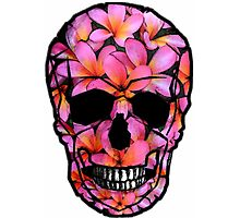 Skull with Pink Frangipani Flowers Photographic Print