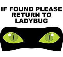 If Found, Please Return to Ladybug Photographic Print