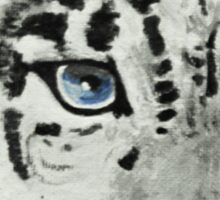 Staring Snow Leopard Sticker