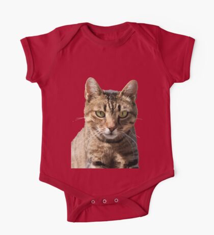 Portrait Of A Cute Tabby Cat With Direct Eye Contact Isolated One Piece - Short Sleeve