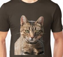 Portrait Of A Cute Tabby Cat With Direct Eye Contact Isolated Unisex T-Shirt