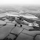 Going solo: Tiger Moth basic trainer, B&W version by Gary Eason
