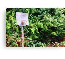 Basketball Forrest Canvas Print