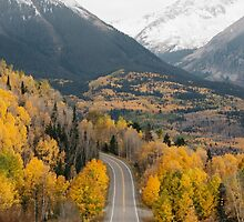Wilderness Road, Mountains and Forest by redcowtees