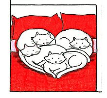 Kittens on a bed Photographic Print