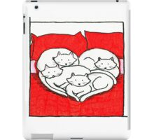 Kittens on a bed iPad Case/Skin