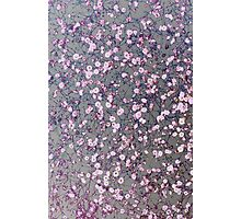 Small pink flowers on silver Photographic Print
