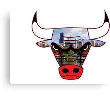 Bulls 6 Canvas Print