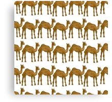 Cute camel Canvas Print