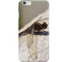 dragonfly on by iPhone Case/Skin