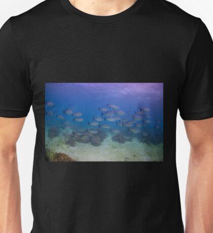 Highfin Rudderfish, Ningaloo Reef Unisex T-Shirt