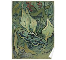 Vincent Van Gogh - Giant Peacock Moth, 1889 Poster