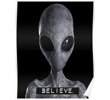 I want to Believe Alien Poster