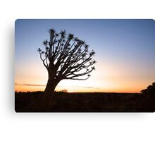 Leaning in the Last Light Canvas Print