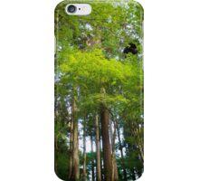Trees in Korankei valley iPhone Case/Skin