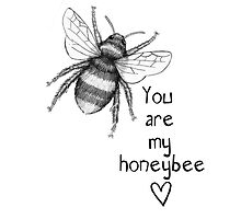 You are my honeybee by Jazmine Phillips