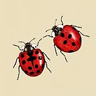 Ladybirds by djrbennett