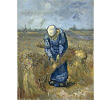 Vincent Van Gogh - Peasant woman binding sheaves, after Millet Photographic Print