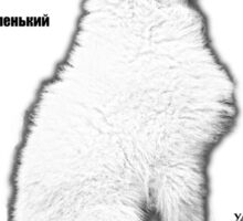 Samoyed. FAQ. Russian Edition Sticker
