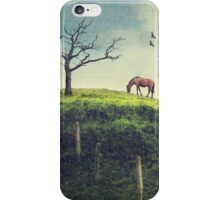 Horse on a Colombian Hillside iPhone Case/Skin