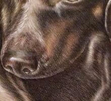 Brown Dachshund dog drawing of pet portrait  Sticker