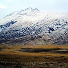 Icelandic mountain 2 by lotusblossom