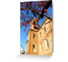 Red on Orange Greeting Card