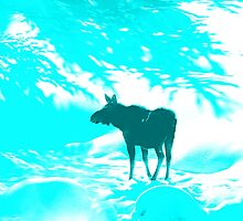 Turquoise Moose on the loose!  by Shellibean1162
