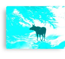 Turquoise Moose on the loose!  Canvas Print