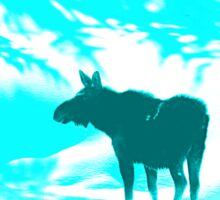 Turquoise Moose on the loose!  Sticker