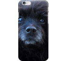 Sweet Puppy iPhone Case/Skin