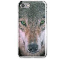 Gray Wolf head shot portrait iPhone Case/Skin