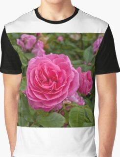 Rose - pink Graphic T-Shirt