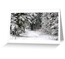 The old lumberjacks road at the winter Greeting Card
