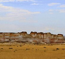 Monument Rocks in Western Kansas by Catherine Sherman