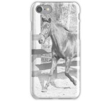Horse Pencil Sketch iPhone Case/Skin
