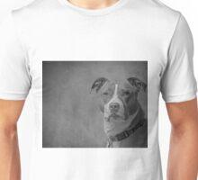 Shelby 2014-1 Unisex T-Shirt