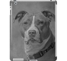 Shelby 2014-1 iPad Case/Skin