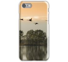 Fly a way iPhone Case/Skin