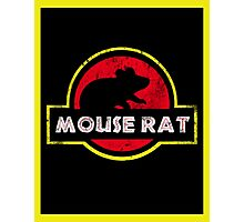 Mouse Rat Distressed Photographic Print