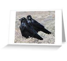 Painted Desert Raven Pair Greeting Card