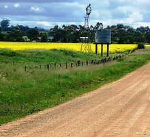 Country Fence and road - Balliang, Vic. by EdsMum