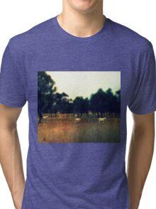 Highlands Tri-blend T-Shirt