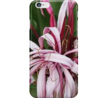 Giant Spider Lily iPhone Case/Skin