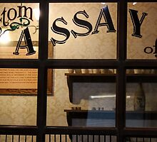 Assay Office by Laurie Puglia