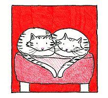 Cuddle cats Photographic Print