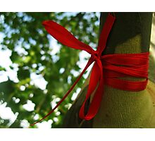 Wishing Tree - Red Bow Photographic Print