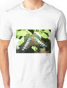 Turquoise blue, white & black butterfly Unisex T-Shirt